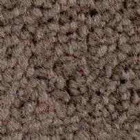 jhs Housebuilder Collection: Drayton Twist - Taupe